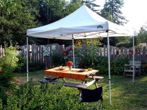 A nice, quaint and simple garden canopy set up.