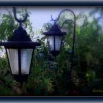 Hanging solar garden lights