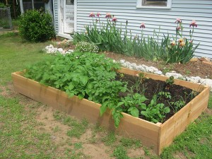 This is a classic looking raised garden bed.