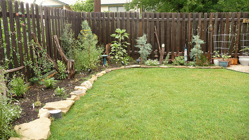 Landscaping Ideas For Front Yard North Texas Home Dignity
