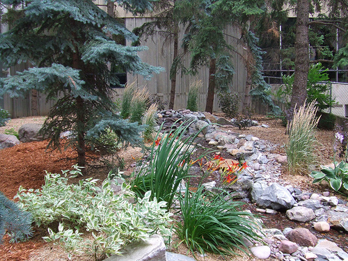 Landscaping ideas for small yards small yard landscaping for Small yard landscaping designs
