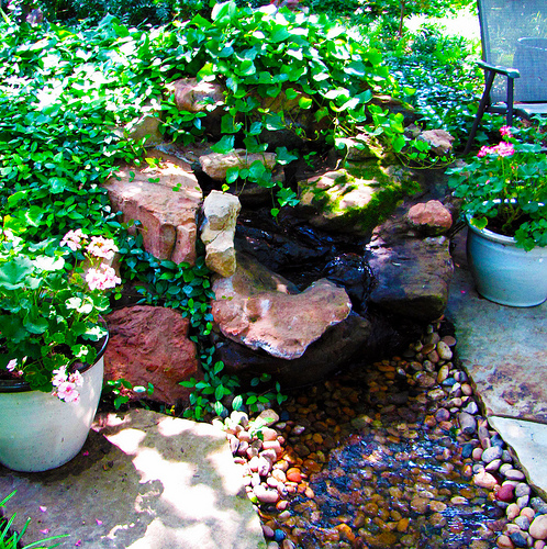Glamorous Container Water Garden Ideas