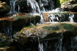 backyard waterfalls_4