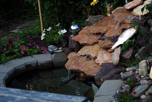 backyard waterfalls_6
